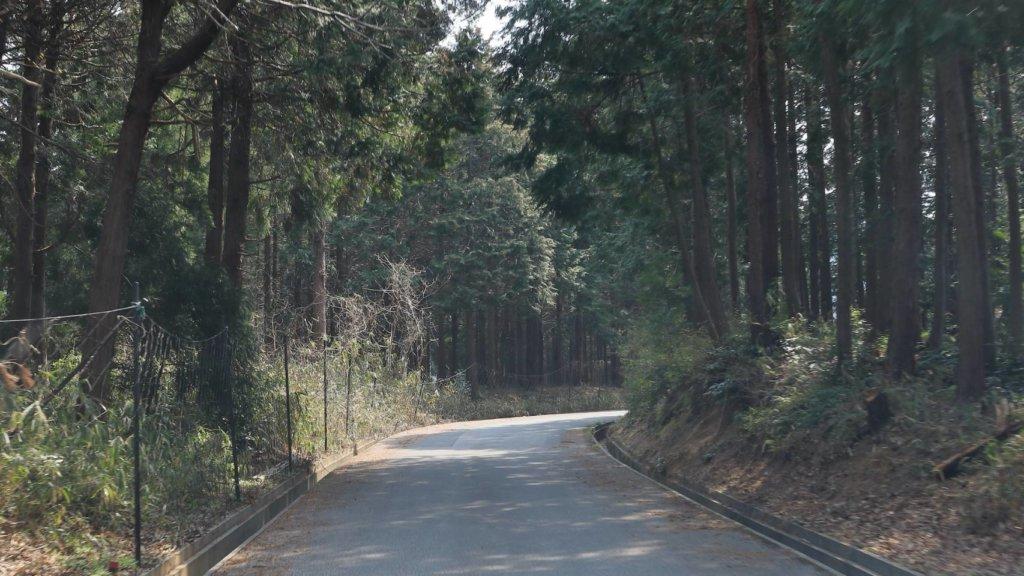 高速バスルート